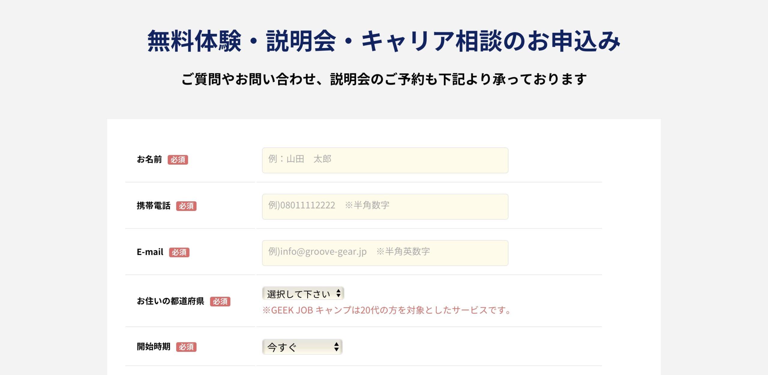 GEEKJOBのプロフィール入力ページNO1